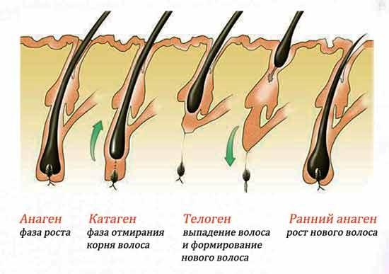 Средства для роста волос своими руками