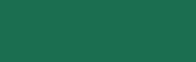dmk logo_banner